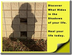 discovershadow click banner