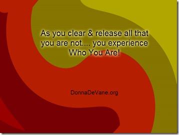 Clean_Clear_DDOrg